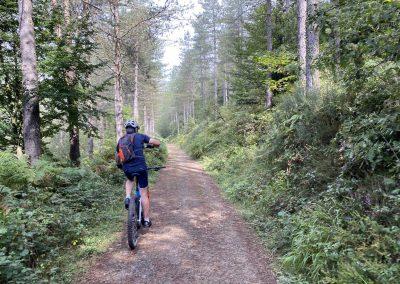 ruta-bosque-abaraxka-cicloturismo-guipuzcoa